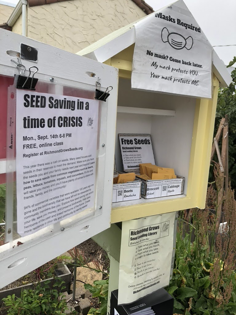 Free seed station